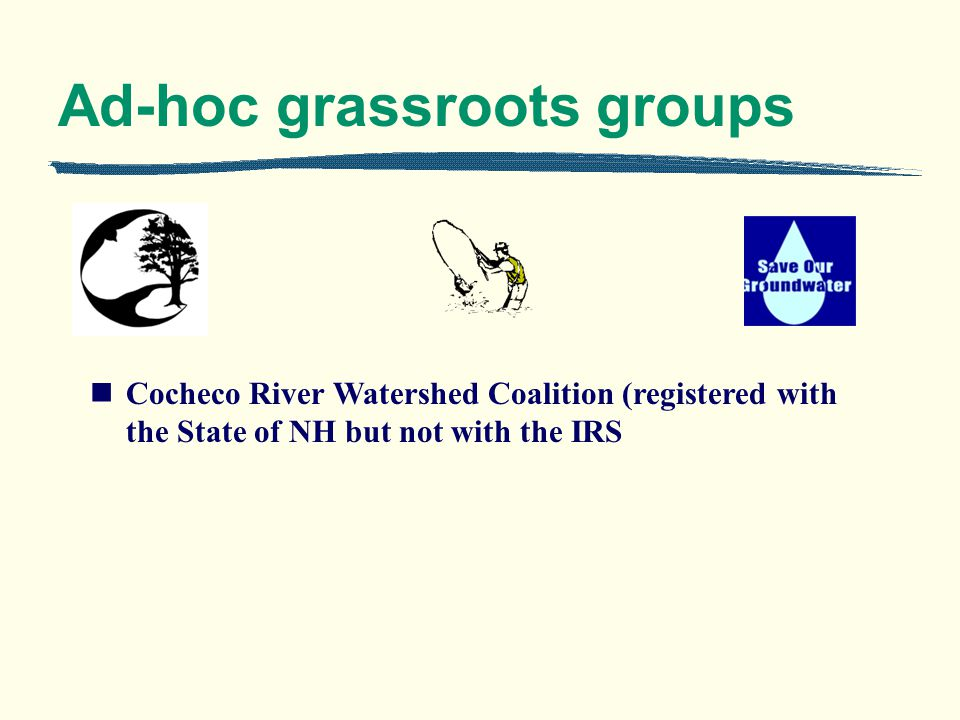 Ad-hoc grassroots groups Cocheco River Watershed Coalition (registered with the State of NH but not with the IRS