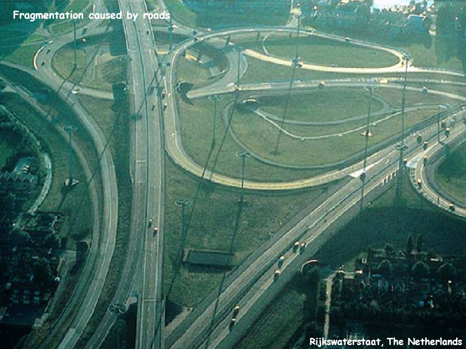 Rijkswaterstaat, The Netherlands Fragmentation caused by roads
