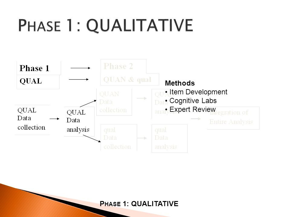 P HASE 1: QUALITATIVE Methods Item Development Cognitive Labs Expert Review