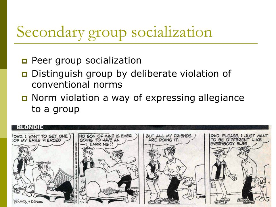 Secondary group socialization Peer group socialization Distinguish group by deliberate violation of conventional norms Norm violation a way of expressing allegiance to a group