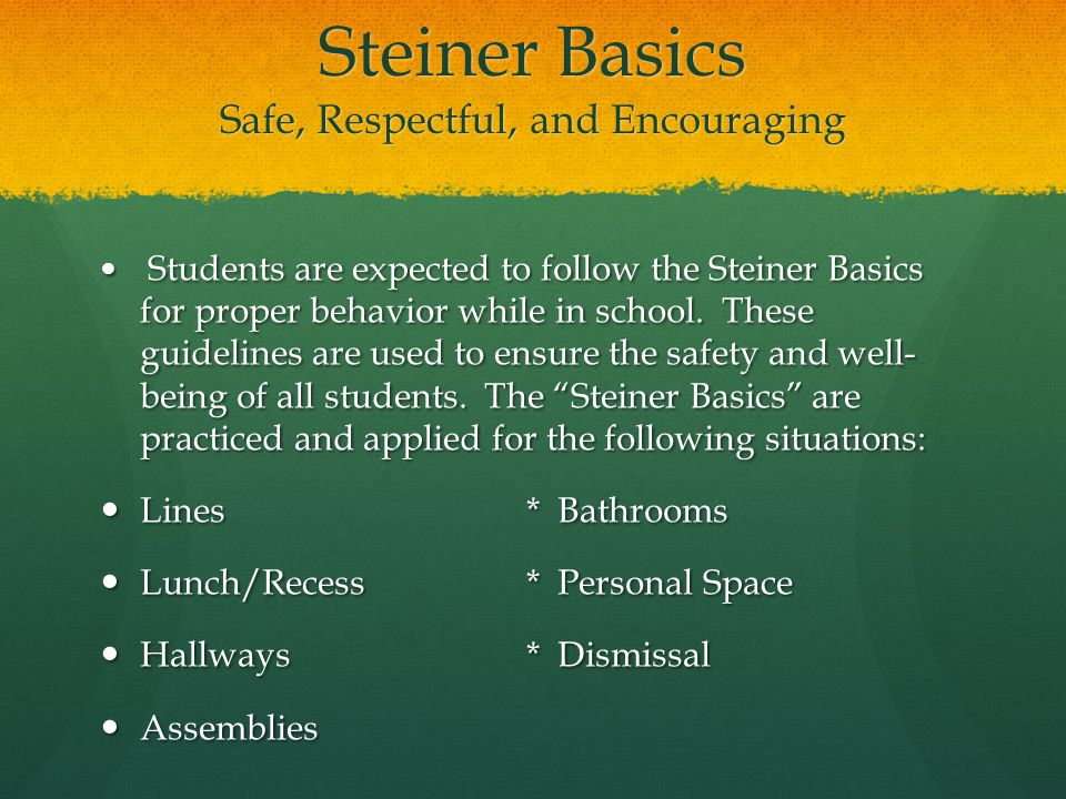 Steiner Basics Safe, Respectful, and Encouraging Students are expected to follow the Steiner Basics for proper behavior while in school.