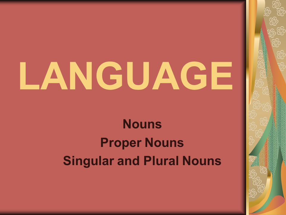 LANGUAGE Nouns Proper Nouns Singular and Plural Nouns