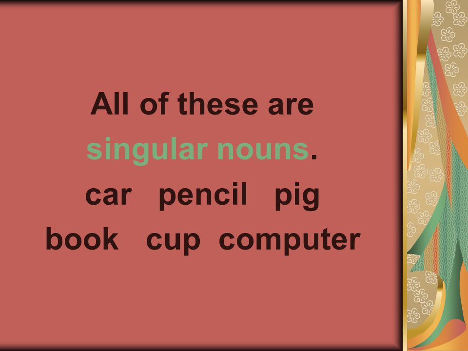All of these are singular nouns. car pencil pig book cup computer