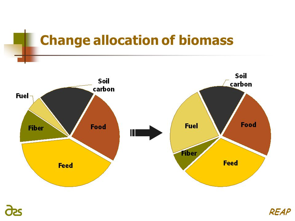 Change allocation of biomass REAP