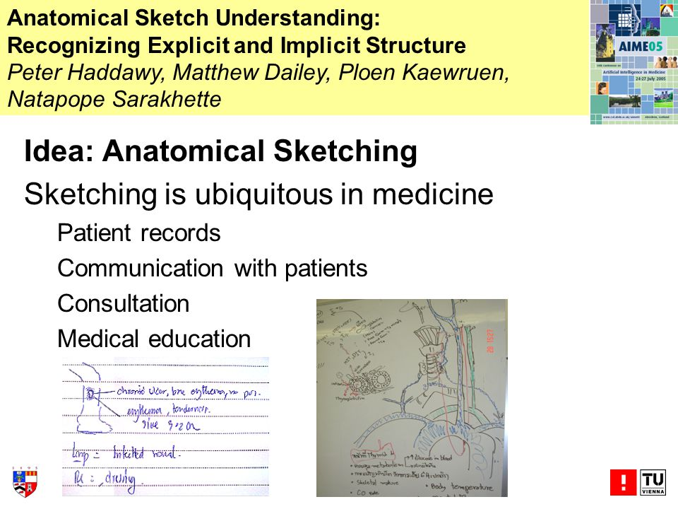 Idea: Anatomical Sketching Sketching is ubiquitous in medicine Patient records Communication with patients Consultation Medical education Anatomical Sketch Understanding: Recognizing Explicit and Implicit Structure Peter Haddawy, Matthew Dailey, Ploen Kaewruen, Natapope Sarakhette