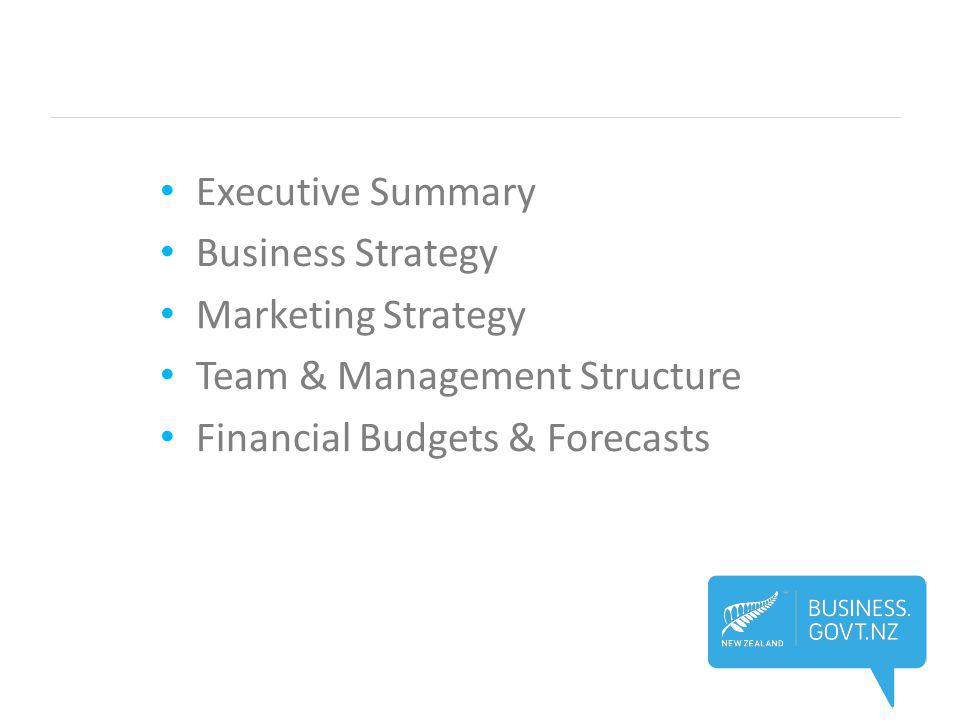 Executive Summary Business Strategy Marketing Strategy Team & Management Structure Financial Budgets & Forecasts