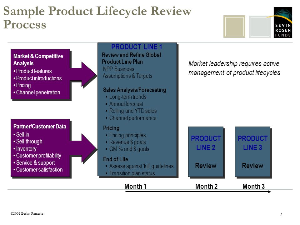 ©2003 Burke, Remacle 7 Sample Product Lifecycle Review Process Month 1Month 2Month 3 PRODUCT LINE 3 Review PRODUCT LINE 3 Review PRODUCT LINE 2 Review PRODUCT LINE 2 Review PRODUCT LINE 1 Review and Refine Global Product Line Plan NPP Business Assumptions & Targets Sales Analysis/Forecasting Long-term trends Annual forecast Rolling and YTD sales Channel performance Pricing Pricing principles Revenue $ goals GM % and $ goals End of Life Assess against kill guidelines Transition plan status PRODUCT LINE 1 Review and Refine Global Product Line Plan NPP Business Assumptions & Targets Sales Analysis/Forecasting Long-term trends Annual forecast Rolling and YTD sales Channel performance Pricing Pricing principles Revenue $ goals GM % and $ goals End of Life Assess against kill guidelines Transition plan status Market & Competitive Analysis Product features Product introductions Pricing Channel penetration Market & Competitive Analysis Product features Product introductions Pricing Channel penetration Partner/Customer Data Sell-in Sell-through Inventory Customer profitability Service & support Customer satisfaction Partner/Customer Data Sell-in Sell-through Inventory Customer profitability Service & support Customer satisfaction Market leadership requires active management of product lifecycles