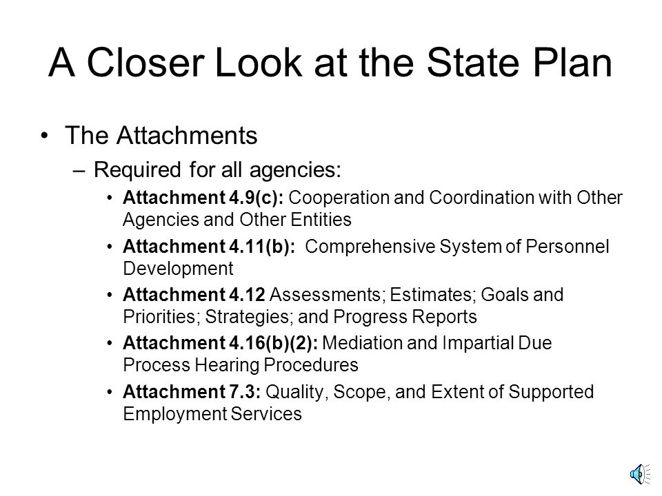 A Closer Look at the State Plan The Preprint –Additional Areas identified for state option Financial needs consideration