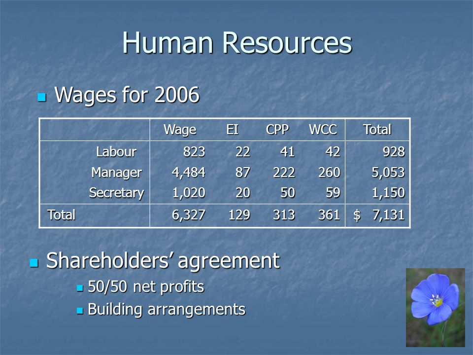 Human Resources Shareholders agreement Shareholders agreement 50/50 net profits 50/50 net profits Building arrangements Building arrangements Wages for 2006 Wages for 2006WageEICPPWCCTotal Labour823224142928 Manager4,484872222605,053 Secretary1,0202050591,150 Total6,327129313361 $ 7,131