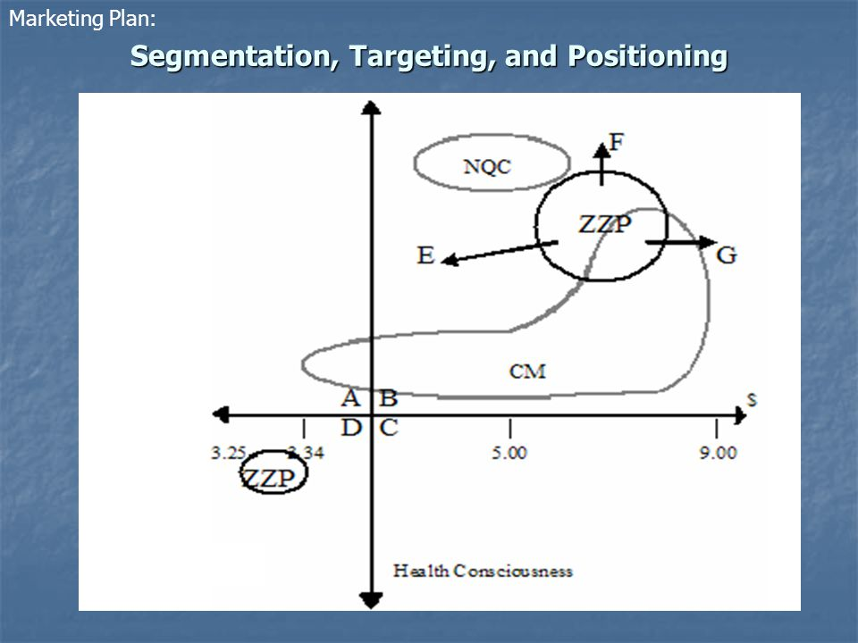 Segmentation, Targeting, and Positioning Marketing Plan: