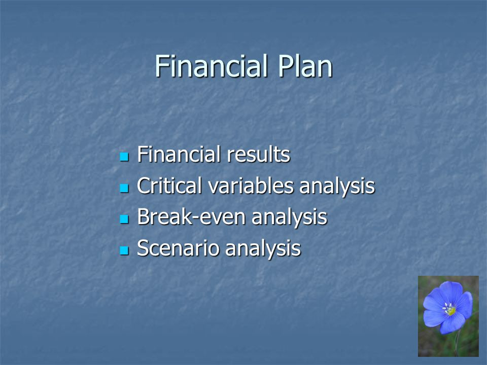Financial Plan Financial results Financial results Critical variables analysis Critical variables analysis Break-even analysis Break-even analysis Scenario analysis Scenario analysis