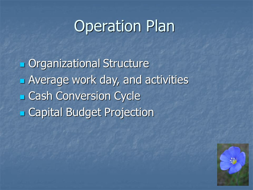 Operation Plan Organizational Structure Organizational Structure Average work day, and activities Average work day, and activities Cash Conversion Cycle Cash Conversion Cycle Capital Budget Projection Capital Budget Projection