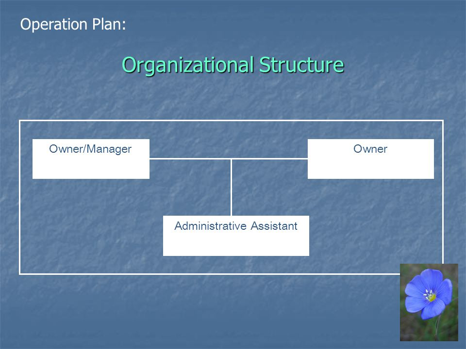 Organizational Structure Owner/ManagerOwner Administrative Assistant Operation Plan: