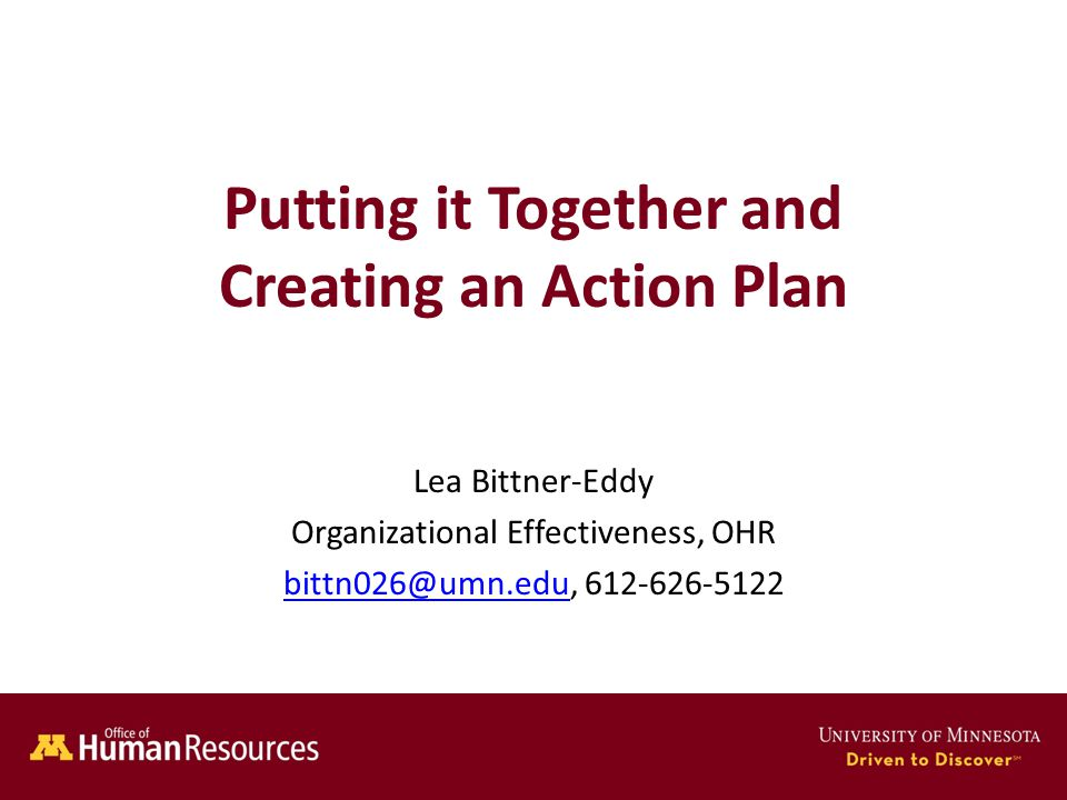 Human Resources Office of Putting it Together and Creating an Action Plan Lea Bittner-Eddy Organizational Effectiveness, OHR bittn026@umn.edubittn026@umn.edu, 612-626-5122