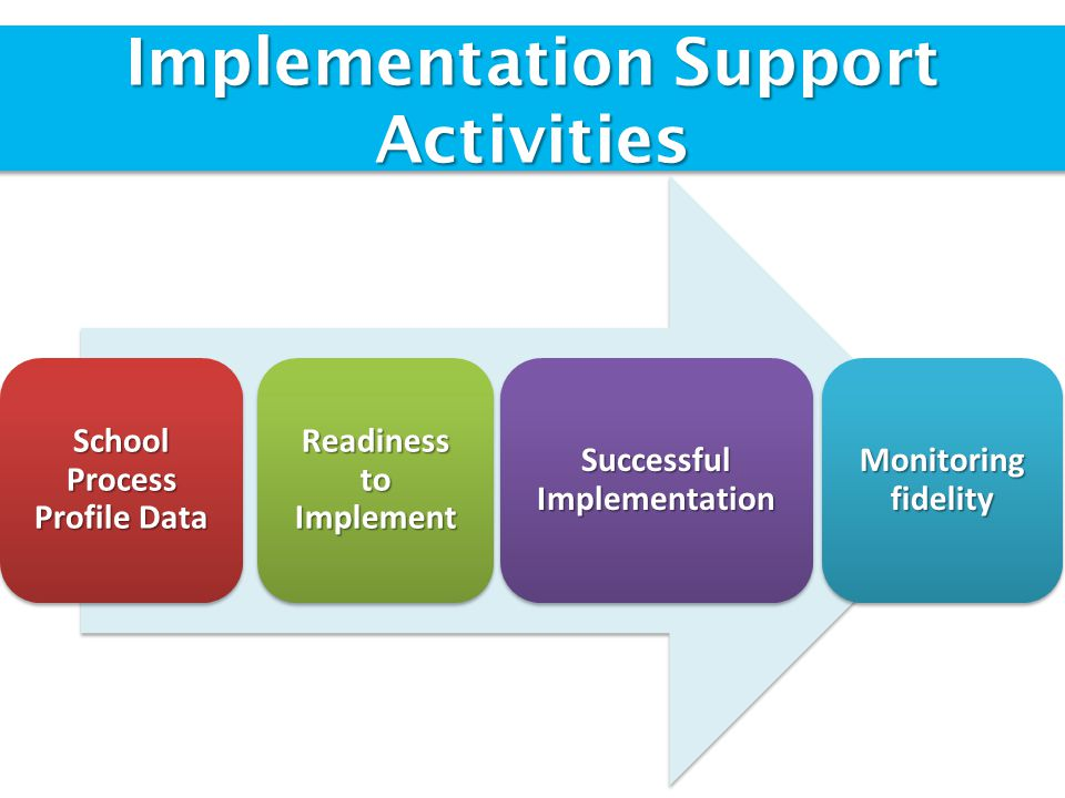 Implementation Support Activities School Process Profile Data Readiness to Implement Successful Implementation Monitoring fidelity