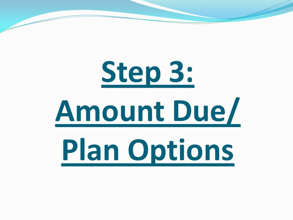 Step 3: Amount Due/ Plan Options