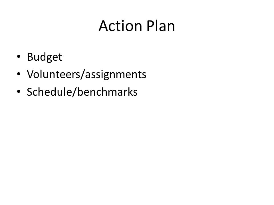 Action Plan Budget Volunteers/assignments Schedule/benchmarks