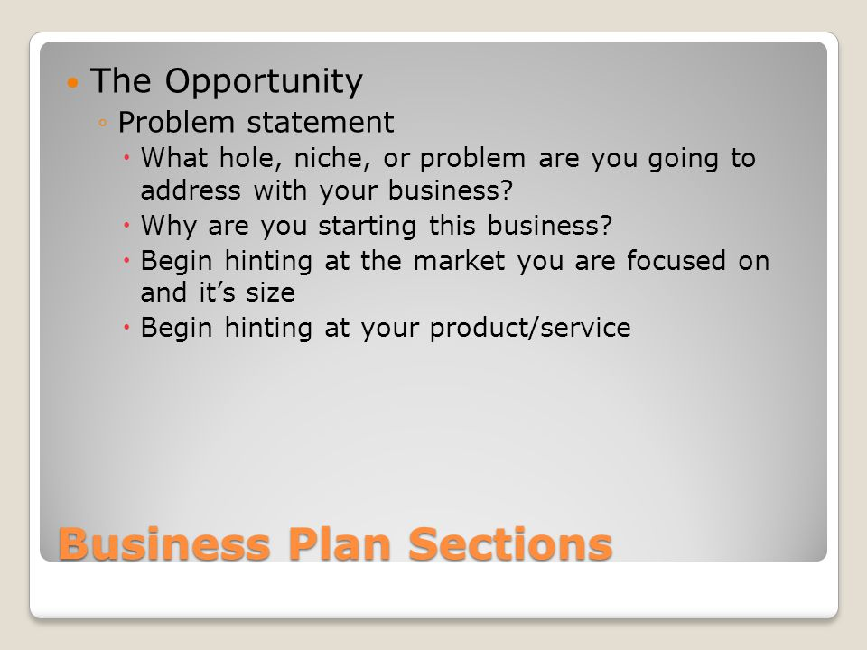 Business Plan Sections The Opportunity Problem statement What hole, niche, or problem are you going to address with your business.