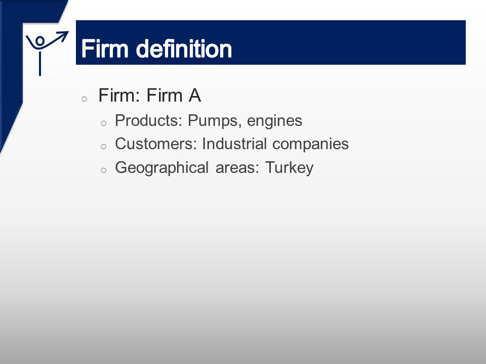 o Firm: Firm A o Products: Pumps, engines o Customers: Industrial companies o Geographical areas: Turkey