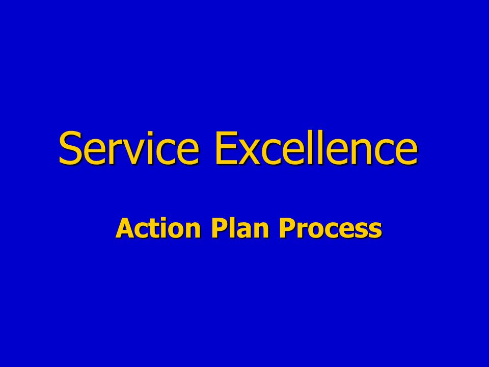 Service Excellence Action Plan Process