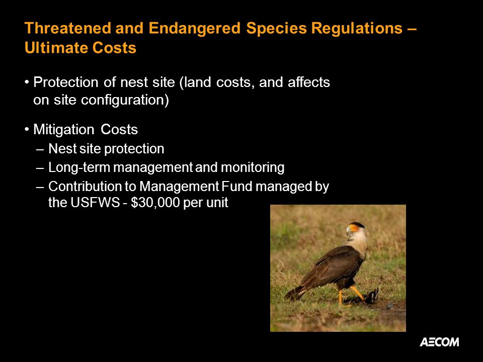 Threatened and Endangered Species Regulations – Ultimate Costs Protection of nest site (land costs, and affects on site configuration) Mitigation Costs –Nest site protection –Long-term management and monitoring –Contribution to Management Fund managed by the USFWS - $30,000 per unit