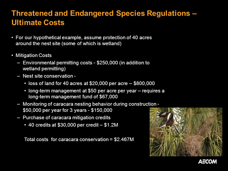 Threatened and Endangered Species Regulations – Ultimate Costs For our hypothetical example, assume protection of 40 acres around the nest site (some of which is wetland) Mitigation Costs –Environmental permitting costs - $250,000 (in addition to wetland permitting) –Nest site conservation - loss of land for 40 acres at $20,000 per acre – $800,000 long-term management at $50 per acre per year – requires a long-term management fund of $67,000 –Monitoring of caracara nesting behavior during construction - $50,000 per year for 3 years - $150,000 –Purchase of caracara mitigation credits 40 credits at $30,000 per credit – $1.2M Total costs for caracara conservation = $2.467M