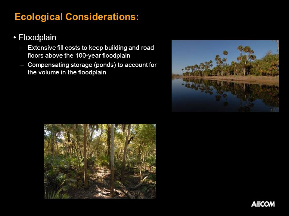 Ecological Considerations: Floodplain –Extensive fill costs to keep building and road floors above the 100-year floodplain –Compensating storage (ponds) to account for the volume in the floodplain