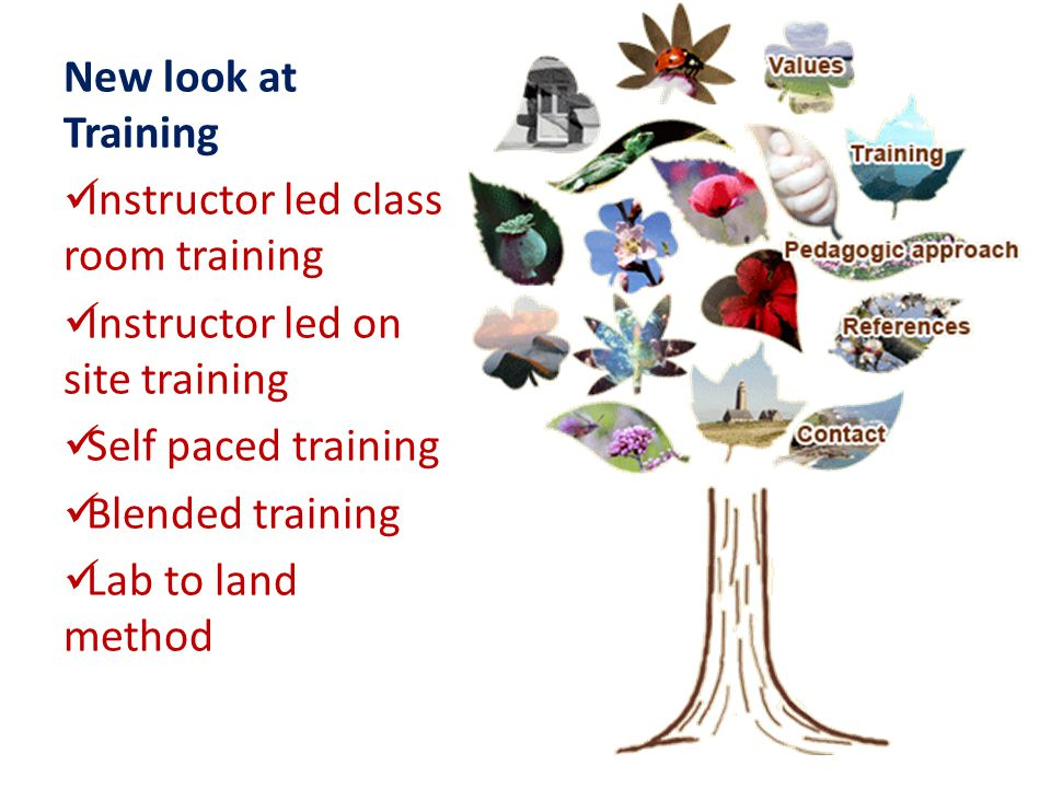 New look at Training Instructor led class room training Instructor led on site training Self paced training Blended training Lab to land method