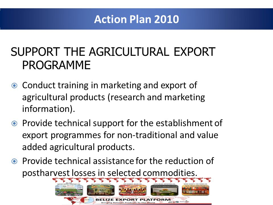 Action Plan 2010 SUPPORT THE AGRICULTURAL EXPORT PROGRAMME Conduct training in marketing and export of agricultural products (research and marketing information).