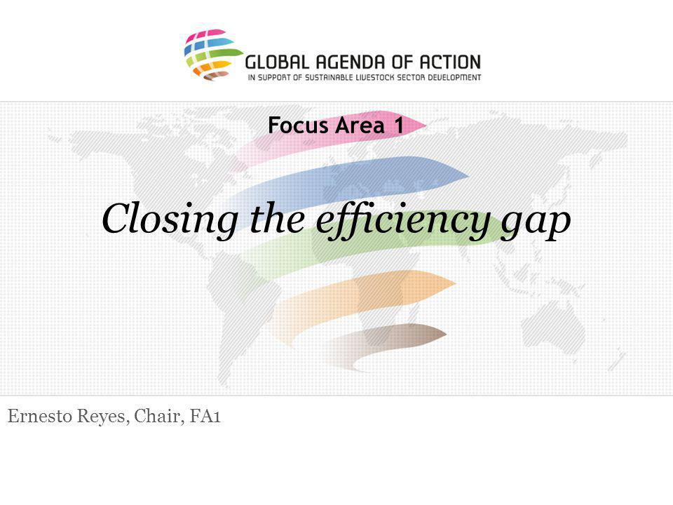 Focus Area 1 Closing the efficiency gap Ernesto Reyes, Chair, FA1