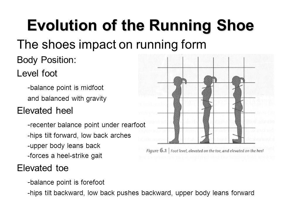 Evolution of the Running Shoe The shoes impact on running form Body Position: Level foot - balance point is midfoot and balanced with gravity Elevated heel - recenter balance point under rearfoot -hips tilt forward, low back arches -upper body leans back -forces a heel-strike gait Elevated toe - balance point is forefoot -hips tilt backward, low back pushes backward, upper body leans forward