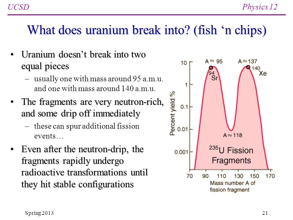 UCSD Physics 12 Spring 201321 What does uranium break into.