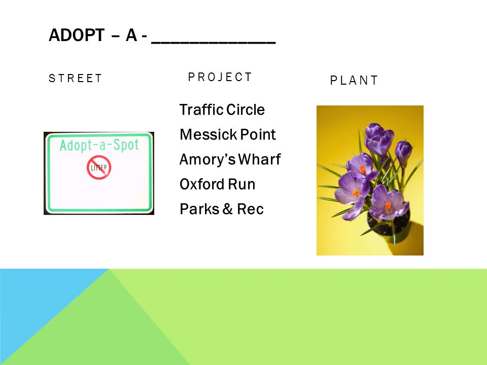ADOPT – A - _____________ STREET PLANT Traffic Circle Messick Point Amorys Wharf Oxford Run Parks & Rec PROJECT