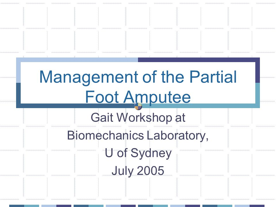 Management of the Partial Foot Amputee Gait Workshop at Biomechanics Laboratory, U of Sydney July 2005