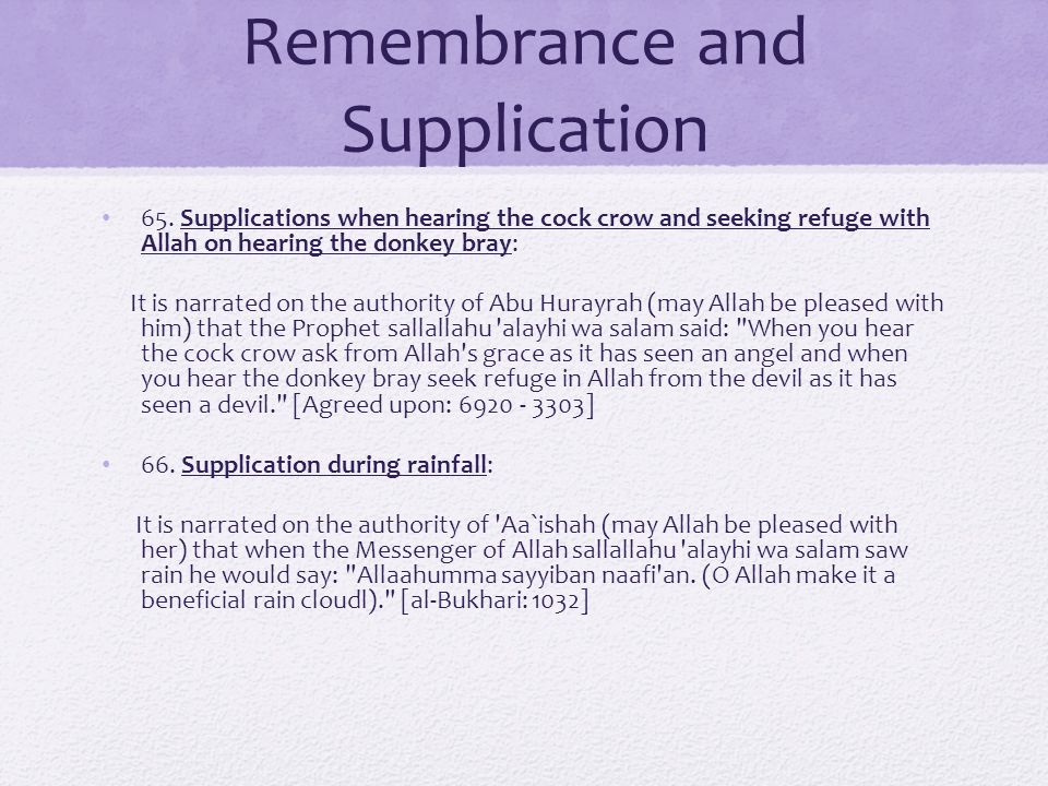 Remembrance and Supplication 65.