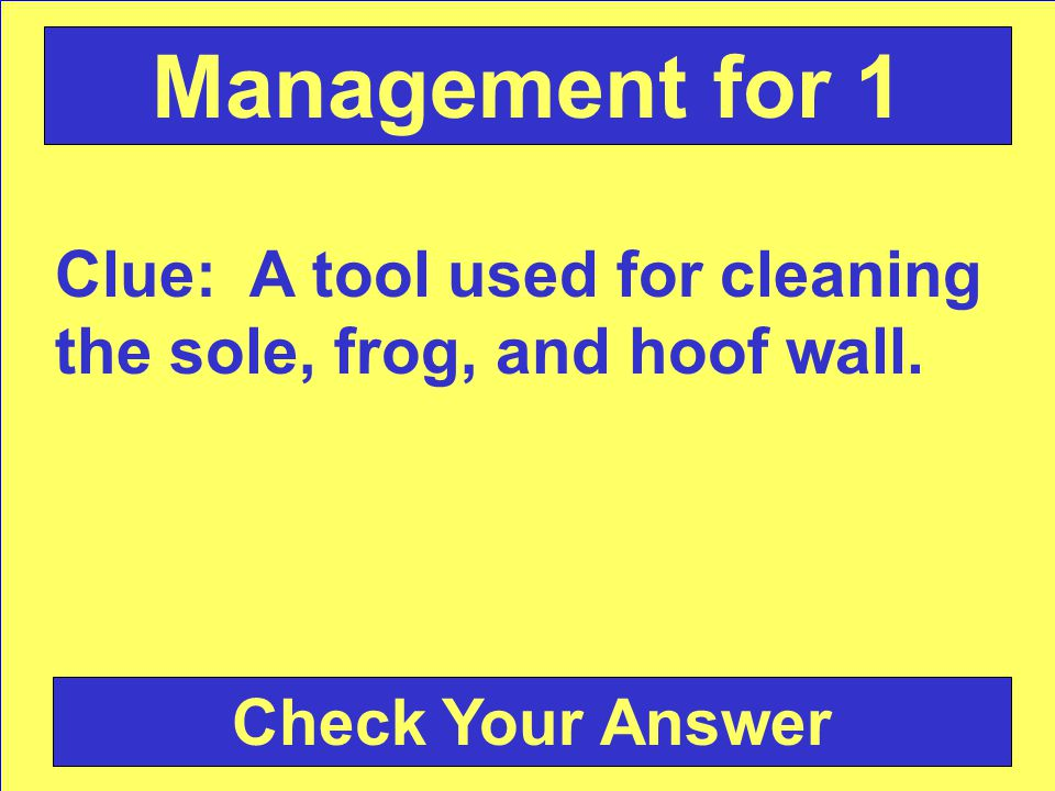 Clue: A tool used for cleaning the sole, frog, and hoof wall. Check Your Answer Management for 1