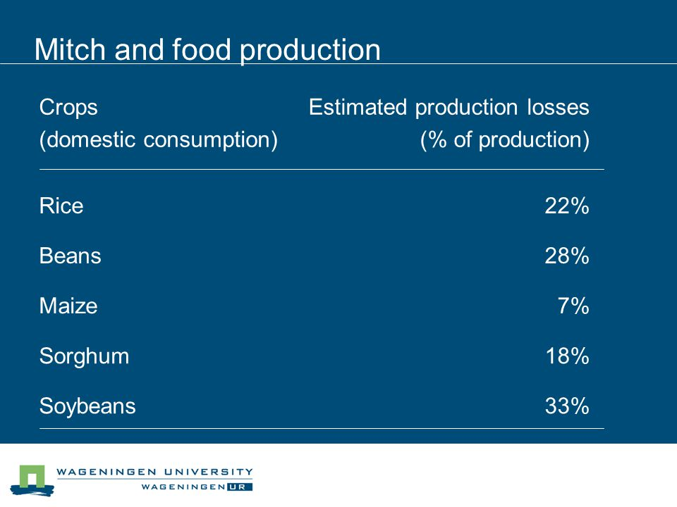 Mitch and food production Crops (domestic consumption) Estimated production losses (% of production) Rice22% Beans28% Maize7% Sorghum18% Soybeans33%