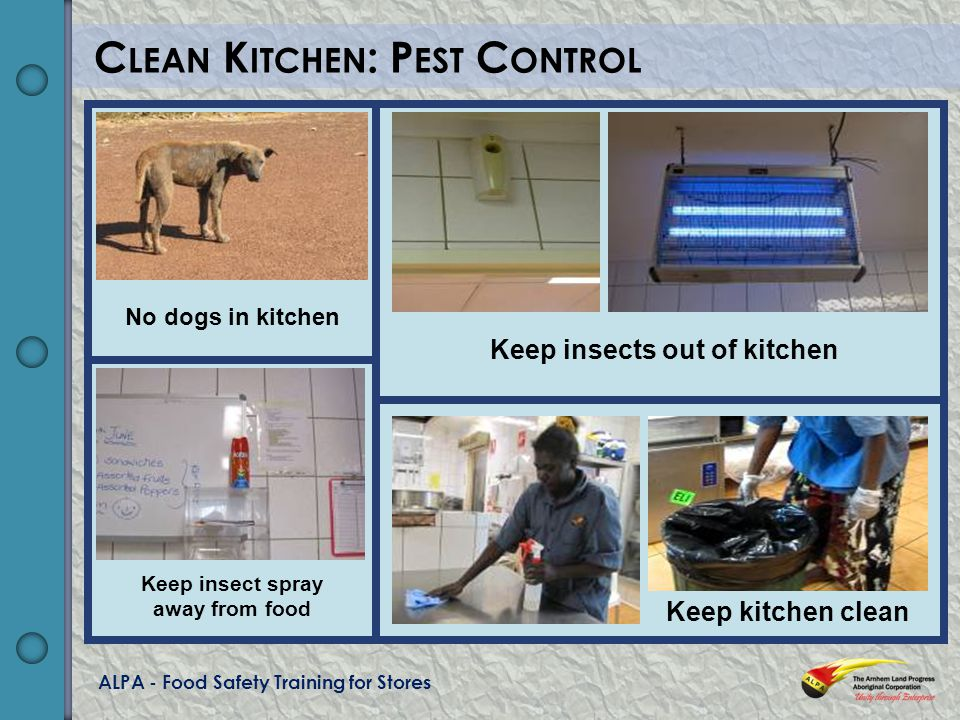 ALPA - Food Safety Training for Stores C LEAN K ITCHEN : P EST C ONTROL No dogs in kitchen Keep insect spray away from food Keep insects out of kitchen Keep kitchen clean