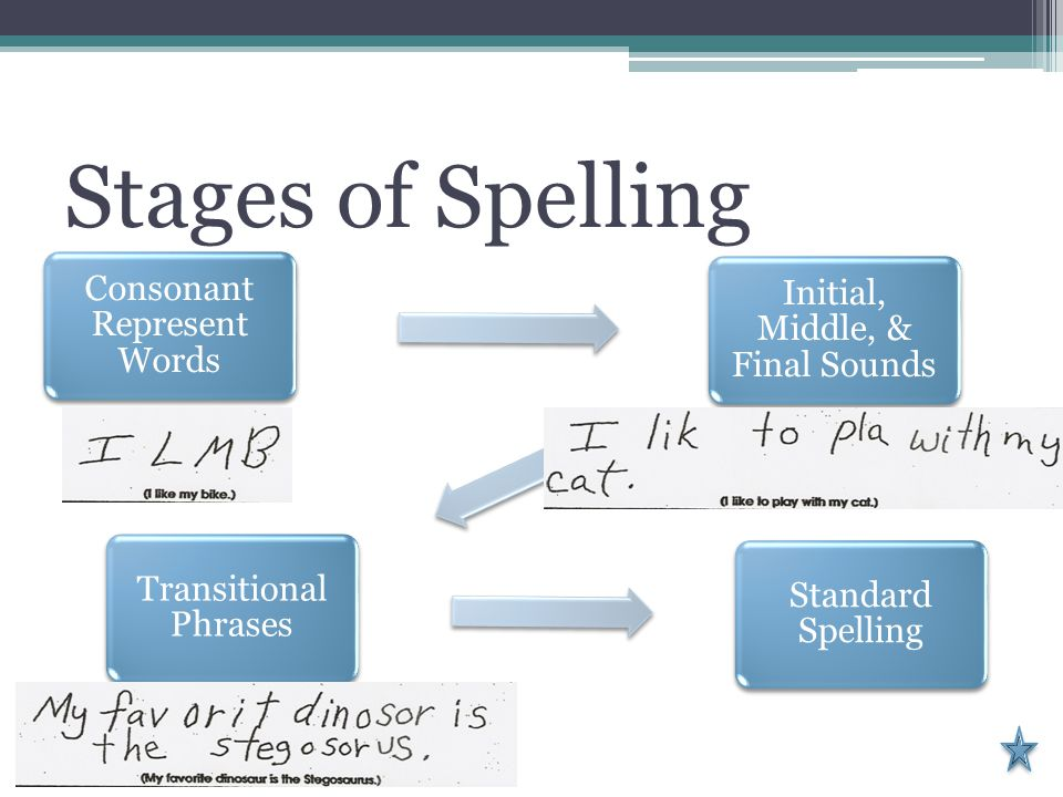 Stages of Spelling Consonant Represent Words Initial, Middle, & Final Sounds Transitional Phrases Standard Spelling