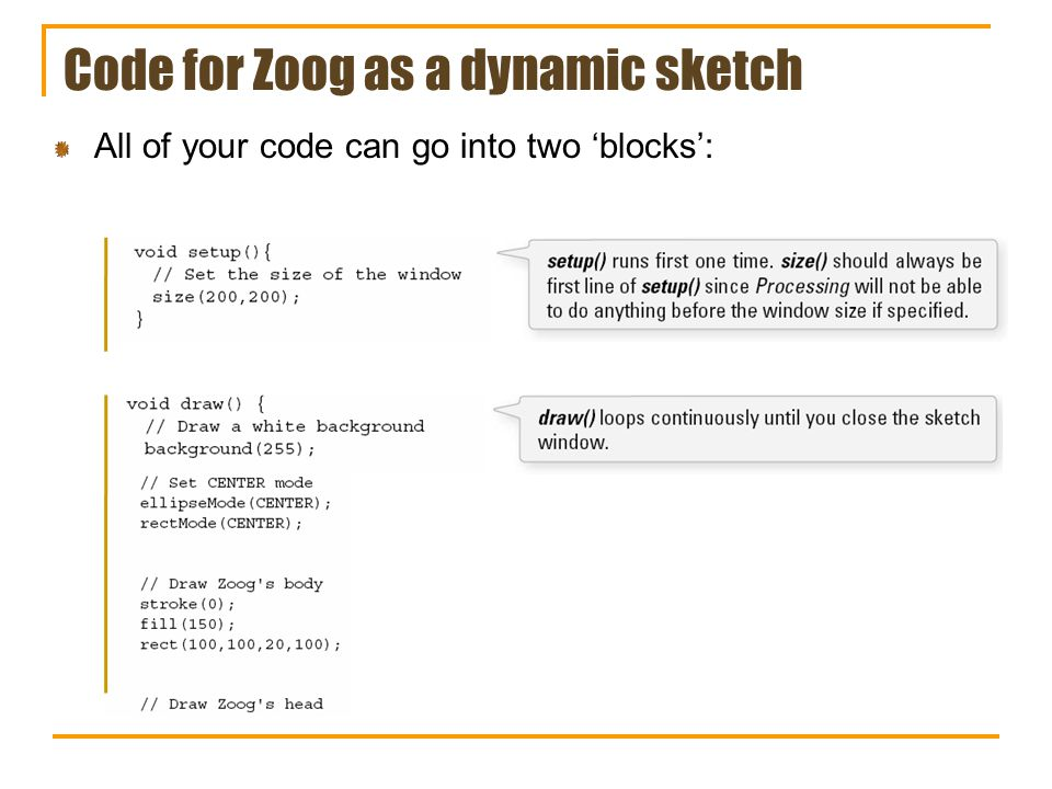 Code for Zoog as a dynamic sketch All of your code can go into two blocks: