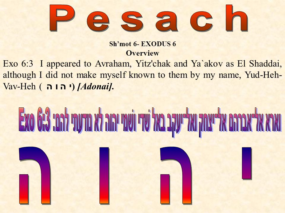 Shmot 6- EXODUS 6 Overview Exo 6:3 I appeared to Avraham, Yitz chak and Ya`akov as El Shaddai, although I did not make myself known to them by my name, Yud-Heh- Vav-Heh ( י ה ו ה ) [Adonai].