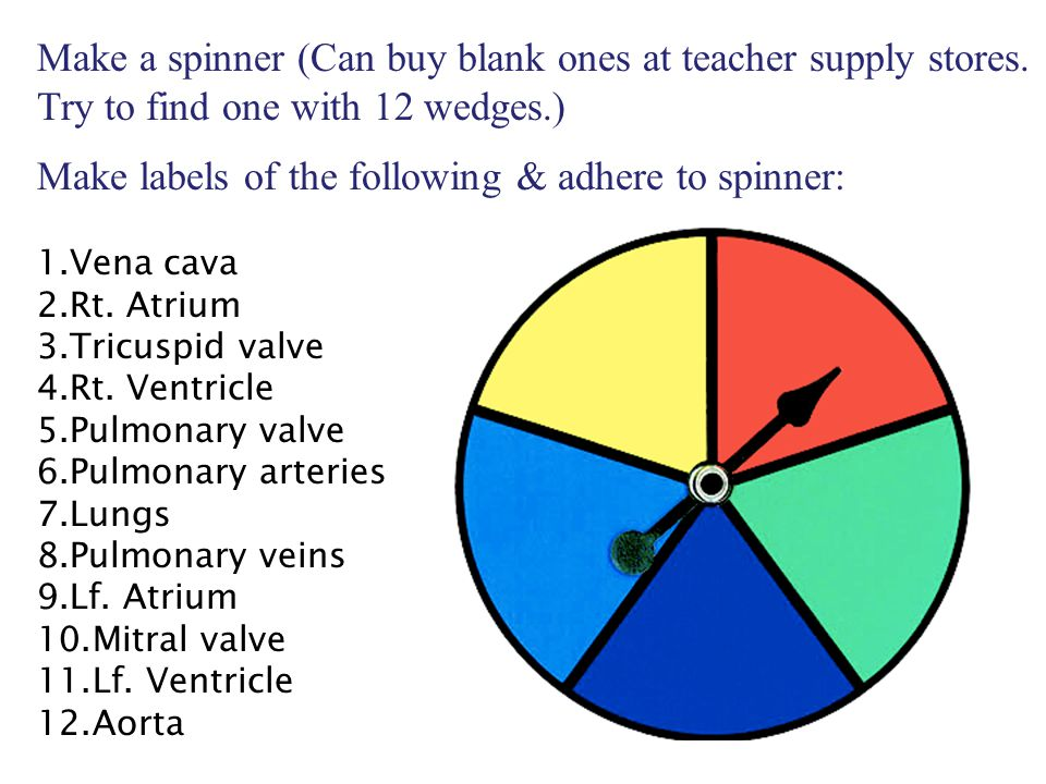 Make a spinner (Can buy blank ones at teacher supply stores.