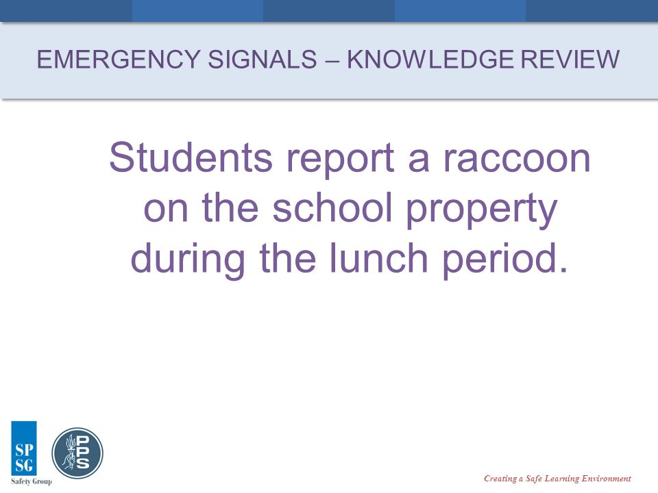 Creating a Safe Learning Environment Students report a raccoon on the school property during the lunch period.