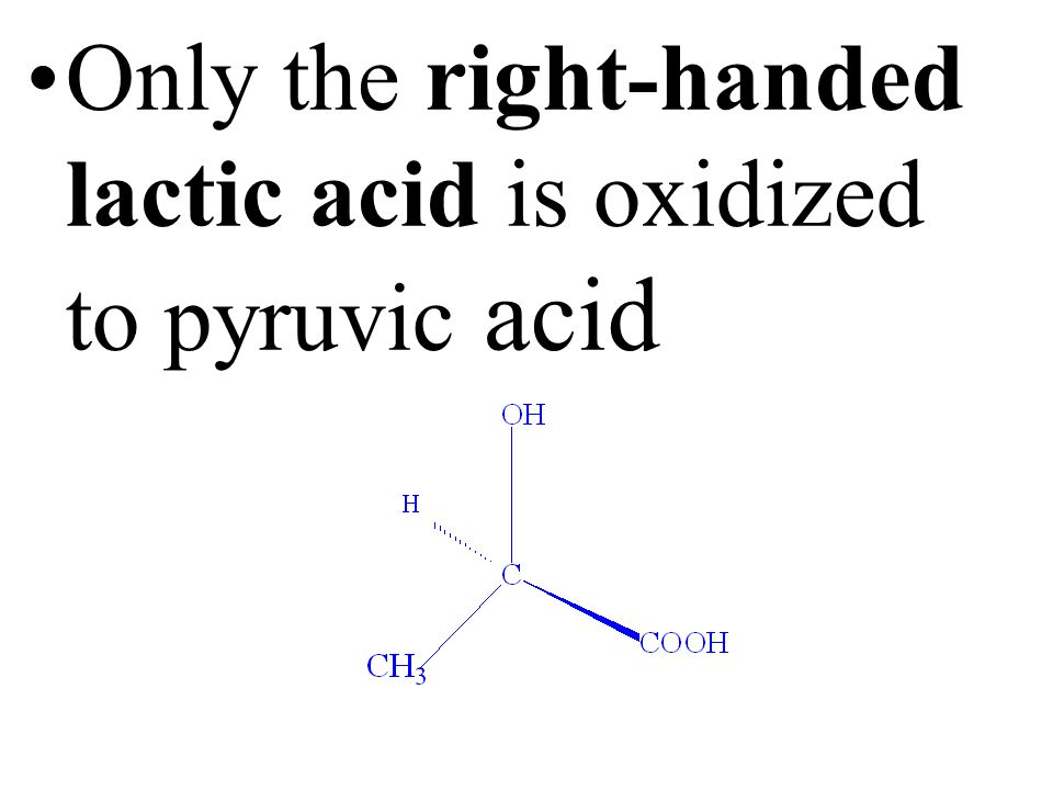 All amino acids in living tissues have the same left-handed twist