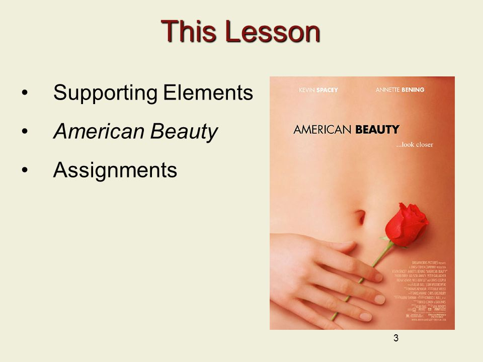This Lesson Supporting Elements American Beauty Assignments 3
