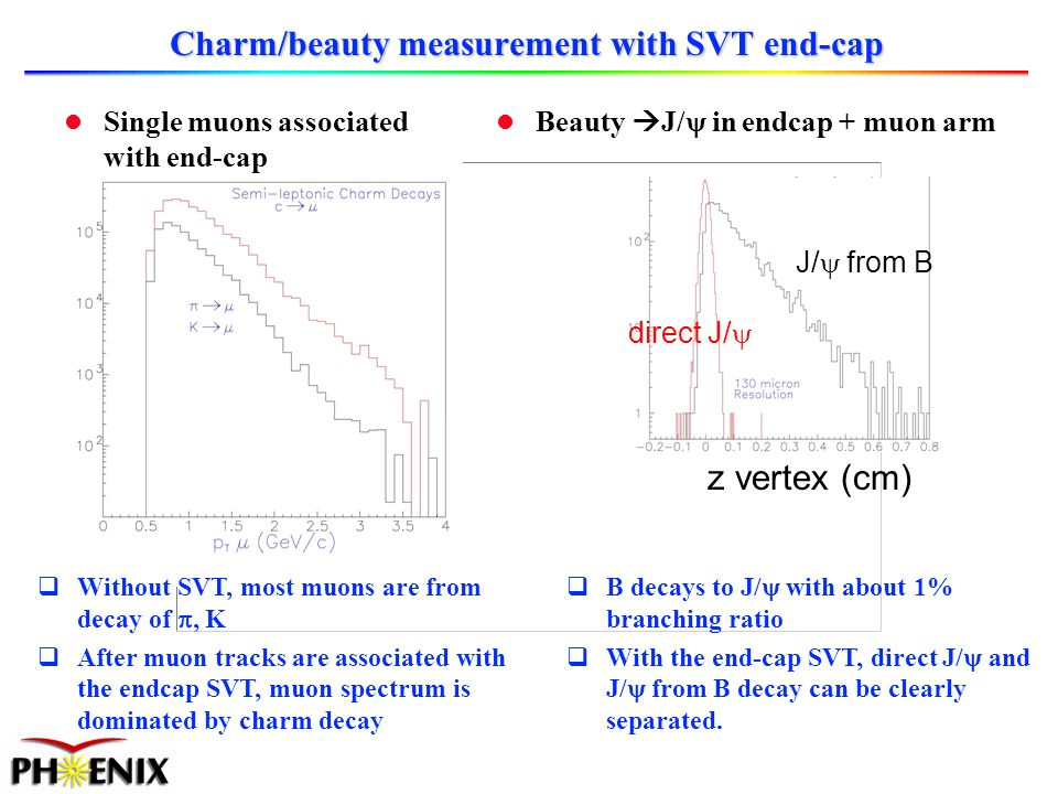 l Single muons associated with end-cap Charm/beauty measurement with SVT end-cap Without SVT, most muons are from decay of, K After muon tracks are associated with the endcap SVT, muon spectrum is dominated by charm decay z vertex (cm) direct J/ J/ from B Beauty J/ in endcap + muon arm B decays to J/ with about 1% branching ratio With the end-cap SVT, direct J/ and J/ from B decay can be clearly separated.
