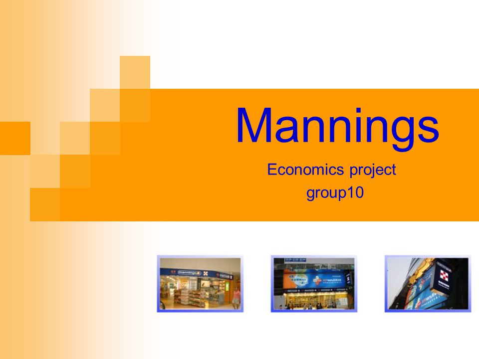 Mannings Economics project group10