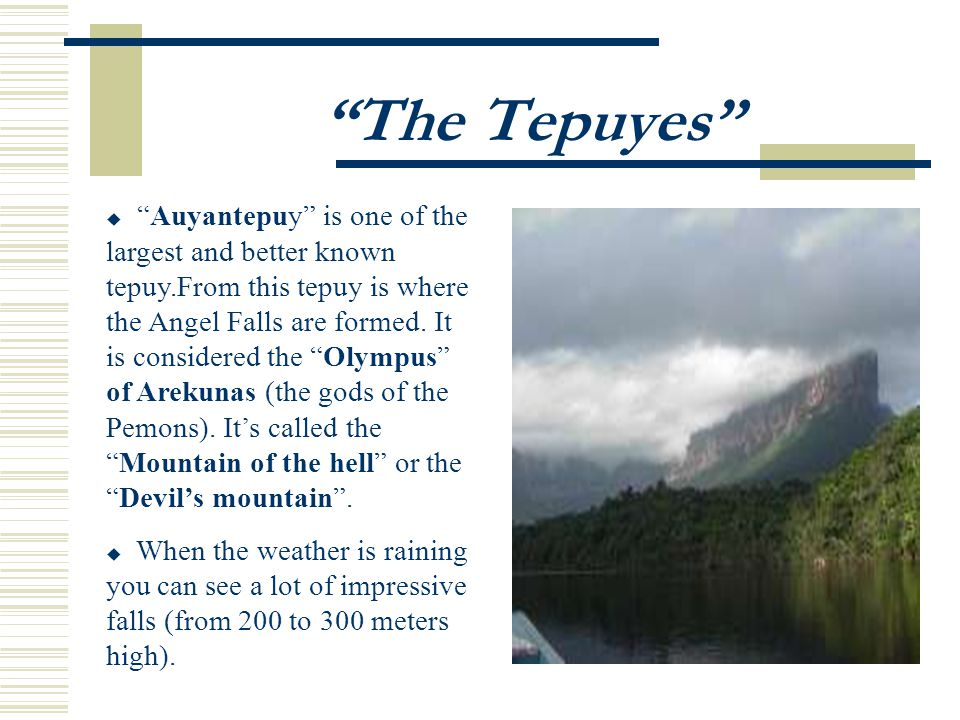 The Tepuyes Auyantepuy is one of the largest and better known tepuy.From this tepuy is where the Angel Falls are formed.