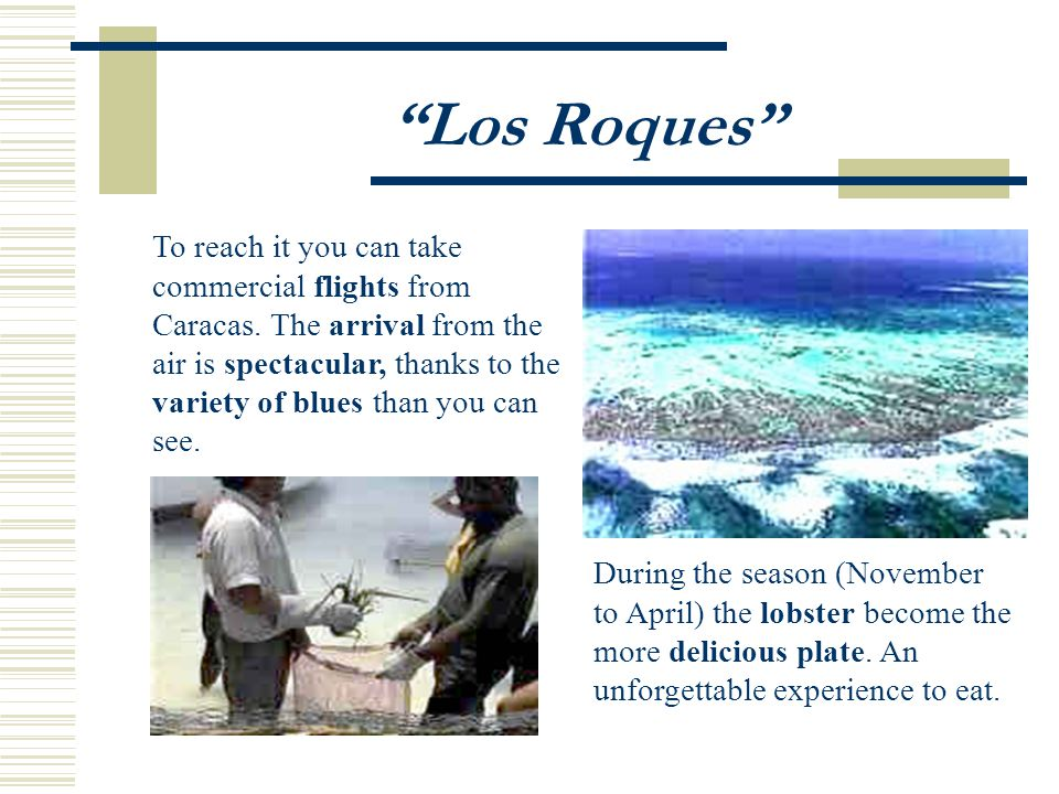 Los Roques During the season (November to April) the lobster become the more delicious plate.