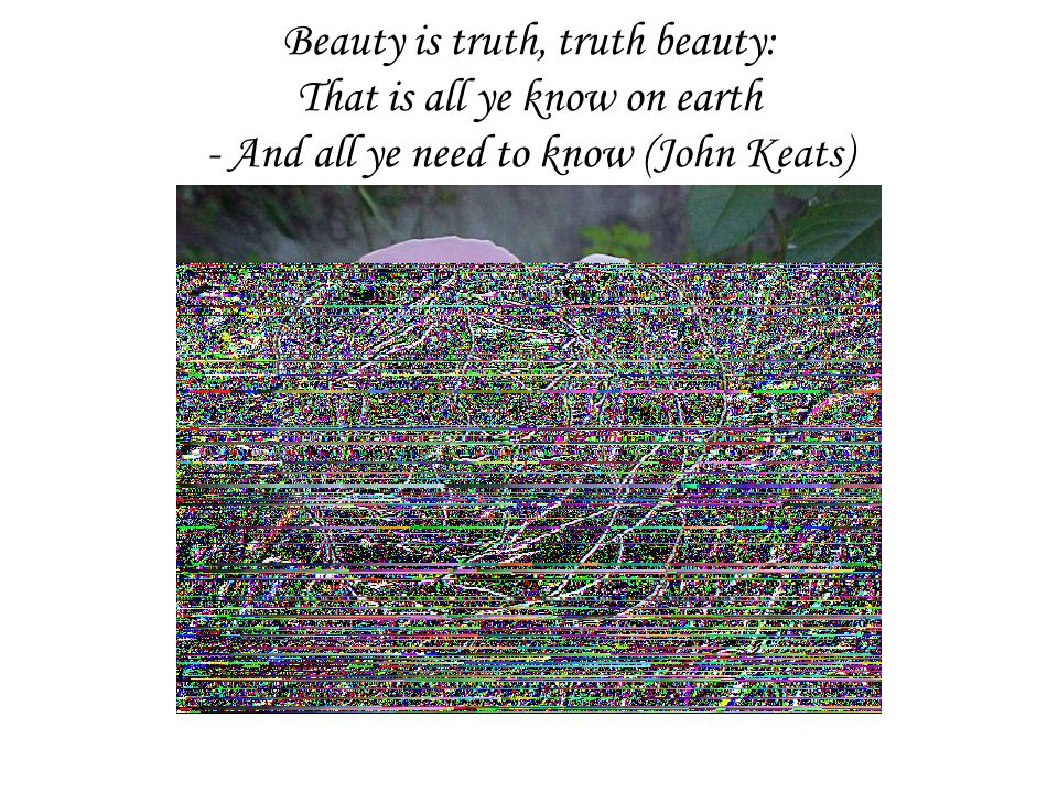 Beauty is truth, truth beauty: That is all ye know on earth - And all ye need to know (John Keats)